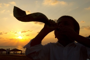 shofar two